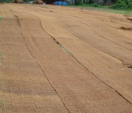 Biodegradable soil blankets